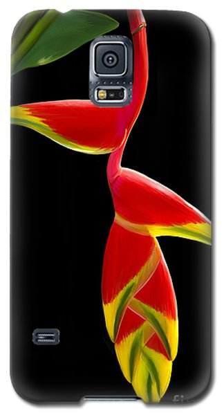 Lobster Claw Galaxy S5 Case