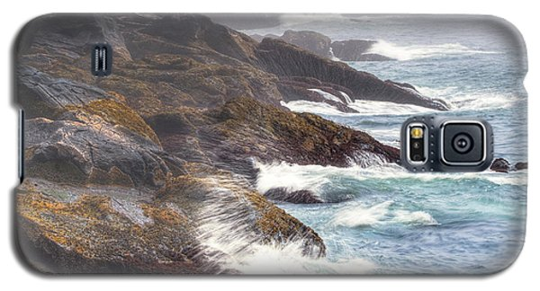 Lobster Cove Galaxy S5 Case