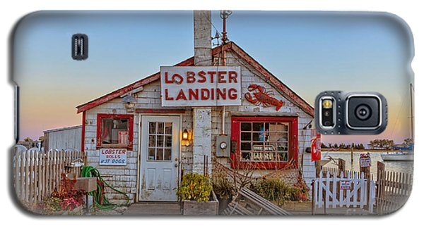 Lobster Landing Sunset Galaxy S5 Case