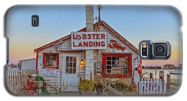 Lobster Landing Sunset Galaxy S5 Case