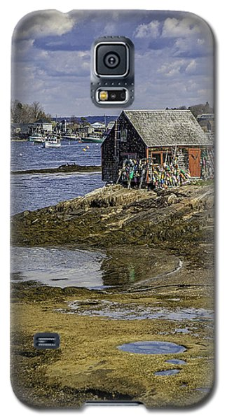 Lobster Shanty Galaxy S5 Case