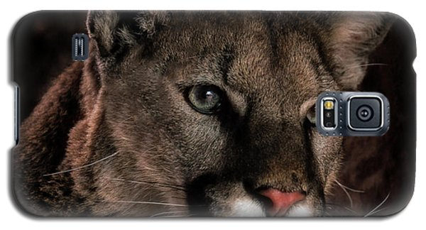 Locked Onto Prey Galaxy S5 Case