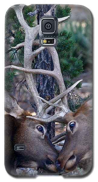 Locking Horns - Well Antlers Galaxy S5 Case