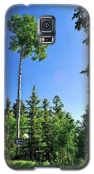 Lone Aspen Galaxy S5 Case