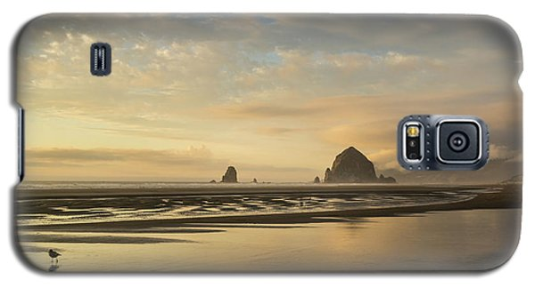 Sunset At Haystack Rock Galaxy S5 Case