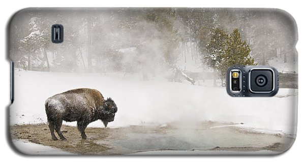 Galaxy S5 Case featuring the photograph Bison Keeping Warm by Gary Lengyel