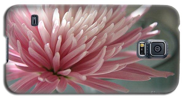 Lone Bloom Galaxy S5 Case by Lynn England