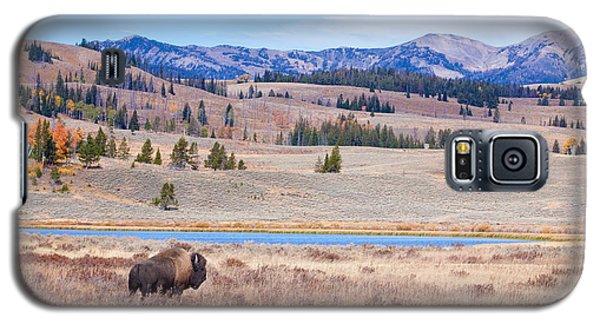 Lone Bull Buffalo Galaxy S5 Case
