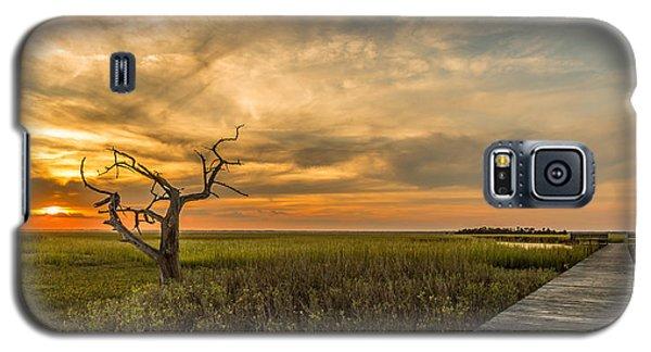 Lone Cedar Dock Sunset - Dewees Island Galaxy S5 Case