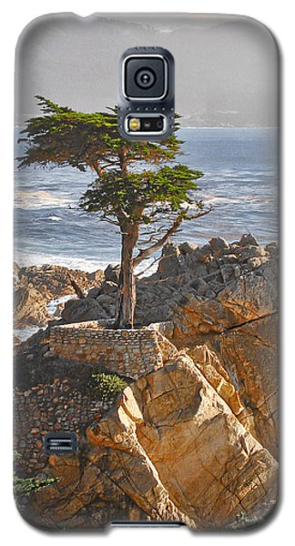 Landscapes Galaxy S5 Case - Lone Cypress - The Icon Of Pebble Beach California by Christine Till