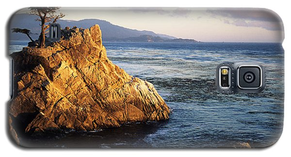 Lone Cypress Tree Galaxy S5 Case by Michael Howell - Printscapes