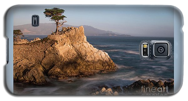 lone Cypress Tree Galaxy S5 Case