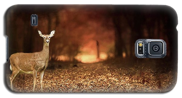 Galaxy S5 Case featuring the photograph Lone Doe by Darren Fisher