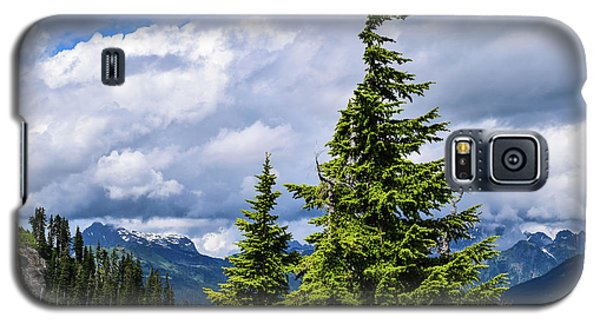 Lone Fir With Clouds Galaxy S5 Case