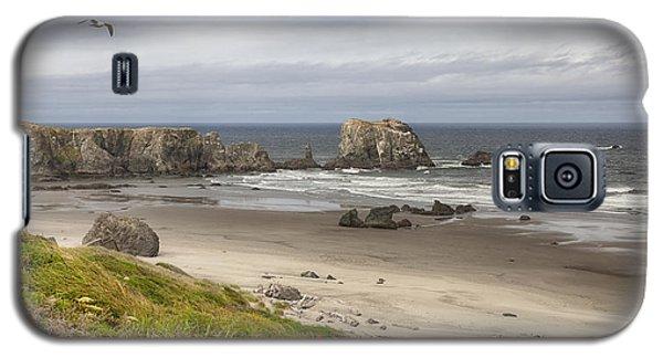 Lone Gull - Bandon Beach Galaxy S5 Case