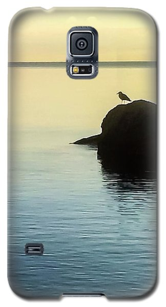 Lone Gull Galaxy S5 Case