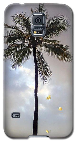 Lone Palm Tree Galaxy S5 Case