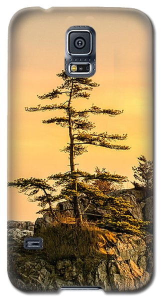Lone Pine-crow Is. Galaxy S5 Case