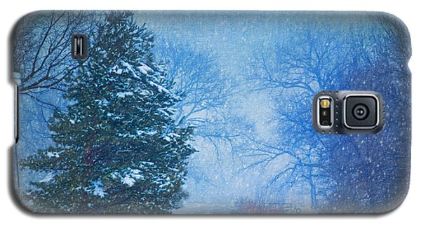 Lone Snowy Lane Galaxy S5 Case