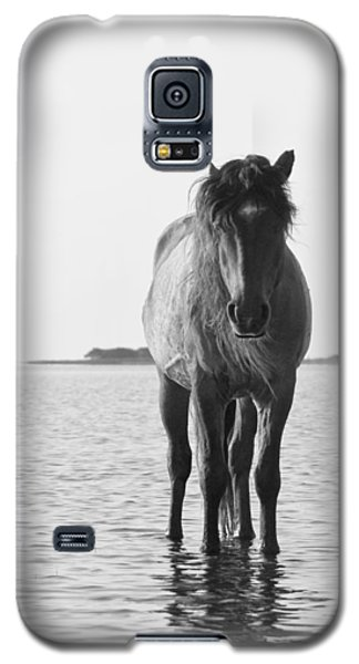 Lone Stallion Galaxy S5 Case by Bob Decker