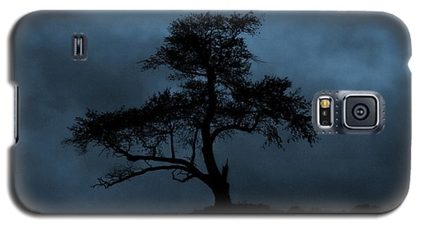 Lone Tree Blue Galaxy S5 Case by Cindy Haggerty