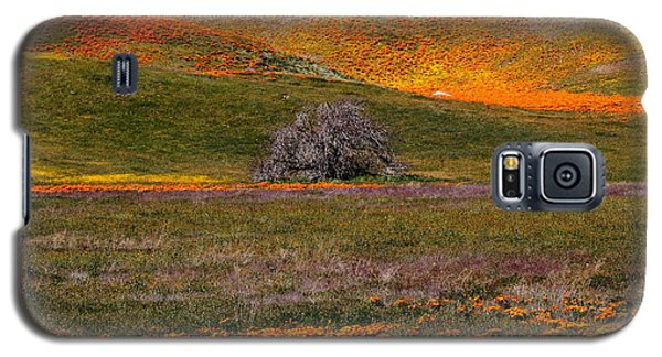 Lone Tree In A Sea Of Orange And Yellow Galaxy S5 Case
