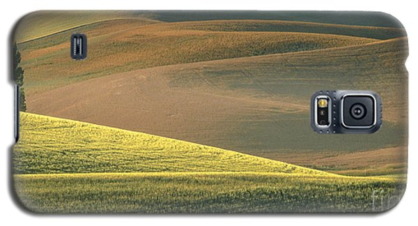 Lone Tree In The Palouse  Galaxy S5 Case