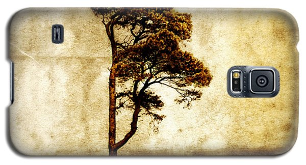 Lone Tree Galaxy S5 Case by Julie Hamilton