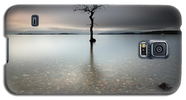 Lone Tree Loch Lomond Galaxy S5 Case by Grant Glendinning