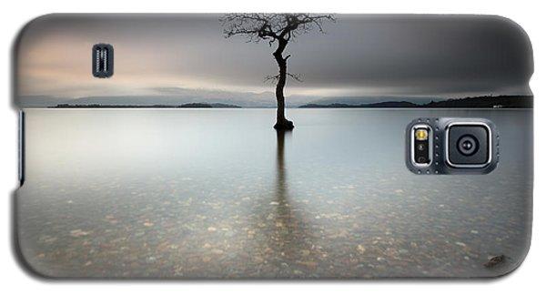 Lone Tree Loch Lomond Galaxy S5 Case