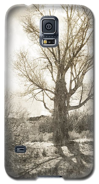 Lone Tree Galaxy S5 Case