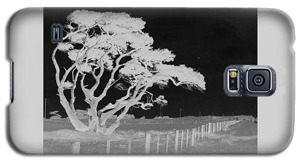 Lone Tree, West Coast Galaxy S5 Case