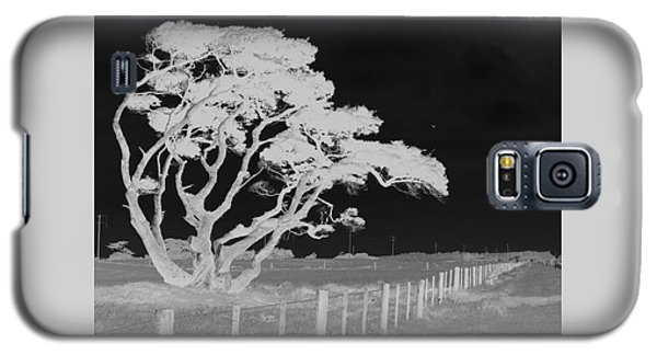 Galaxy S5 Case featuring the photograph Lone Tree, West Coast by Nareeta Martin