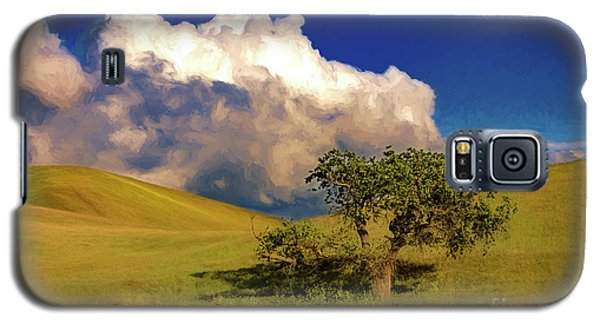 Lone Tree With Storm Clouds Galaxy S5 Case by John A Rodriguez