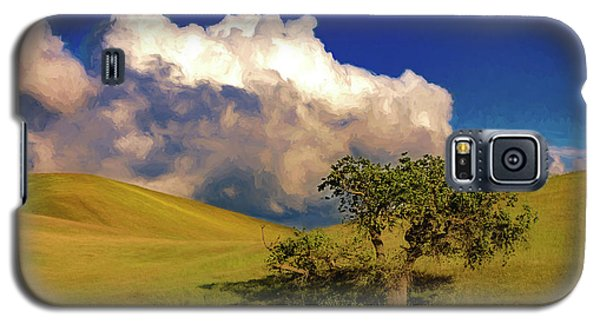 Lone Tree With Storm Clouds Galaxy S5 Case