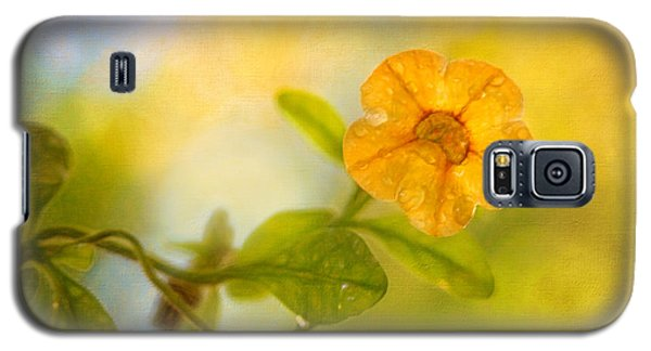 Lone Yellow Flower Galaxy S5 Case