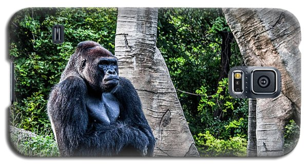Galaxy S5 Case featuring the photograph Lonely Gorilla by Joann Copeland-Paul