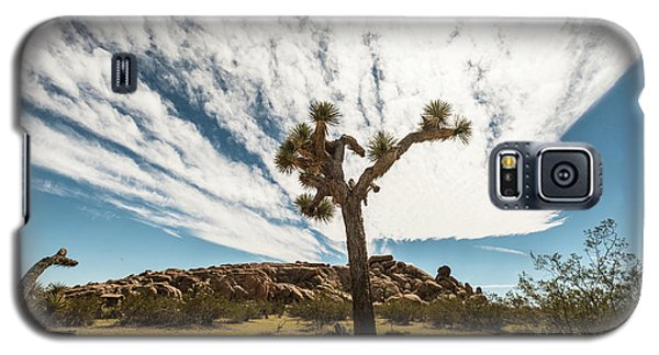Lonely Joshua Tree Galaxy S5 Case