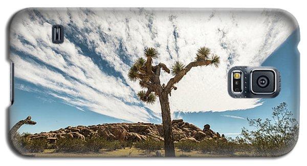 Lonely Joshua Tree Galaxy S5 Case