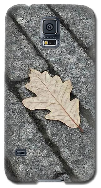 Lonely Leaf Galaxy S5 Case