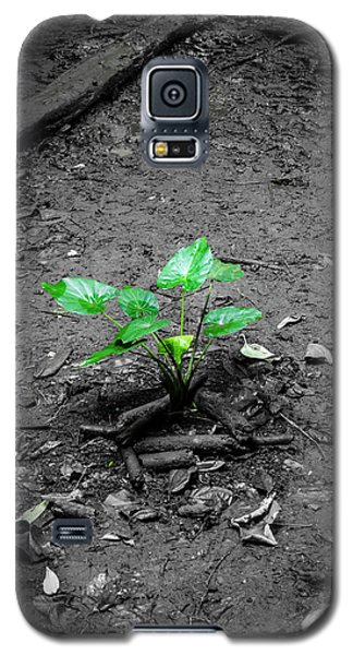 Lonely Plant Galaxy S5 Case