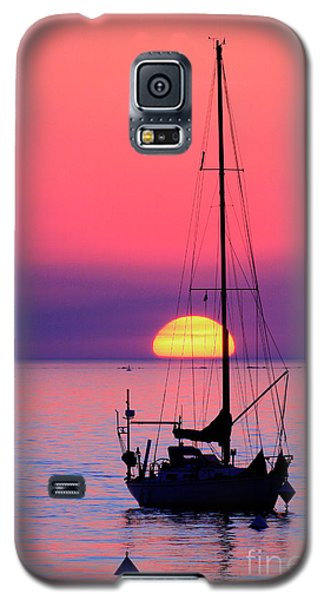 Galaxy S5 Case featuring the photograph Lonely Sunset by Bernardo Galmarini