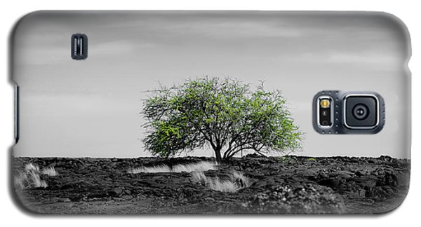 Lonely Tree Galaxy S5 Case