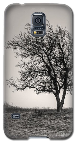 Galaxy S5 Case featuring the photograph Lonesome Tree by Tamyra Ayles