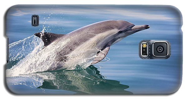 Long Beaked Common Dolphin Galaxy S5 Case