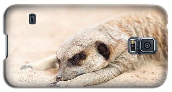 Long Day In Meerkat Village Galaxy S5 Case