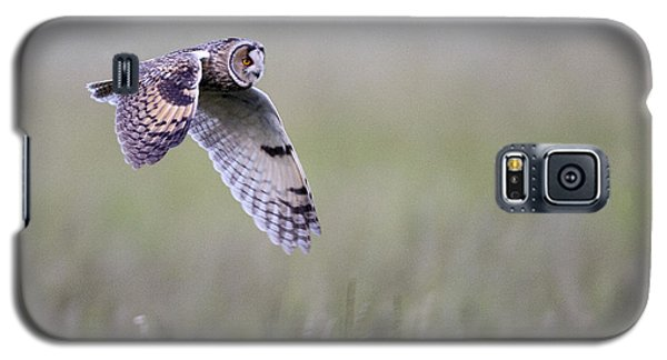 Long Eared Owl Hunting At Dusk Galaxy S5 Case