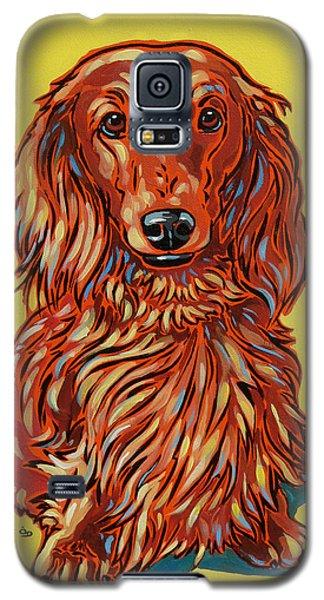 Long Haired Dachshund Galaxy S5 Case