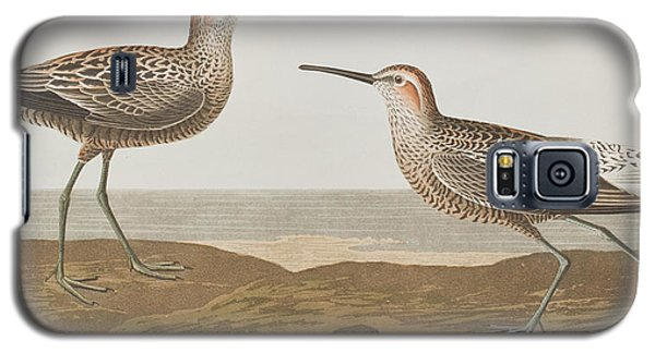 Long-legged Sandpiper Galaxy S5 Case by John James Audubon