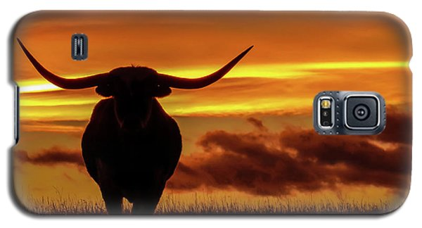 Longhorn At Sunset Galaxy S5 Case